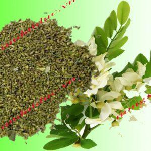 Trà hoa hòe khô Nam Định